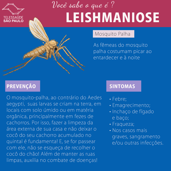 leishmaniose-site.png